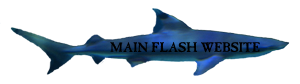 Main Flash SIte